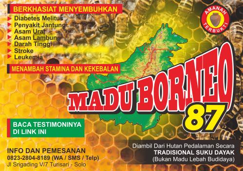 Madu Borneo