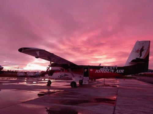 Pesawat Rimbun Air Kecelakaan di Papua, Diduga Tabrak Bukit. Tiga Awaknya Masih Dicari